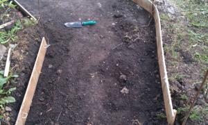 Опалубка для дорожек: для приусадебного участка, садовой дорожки